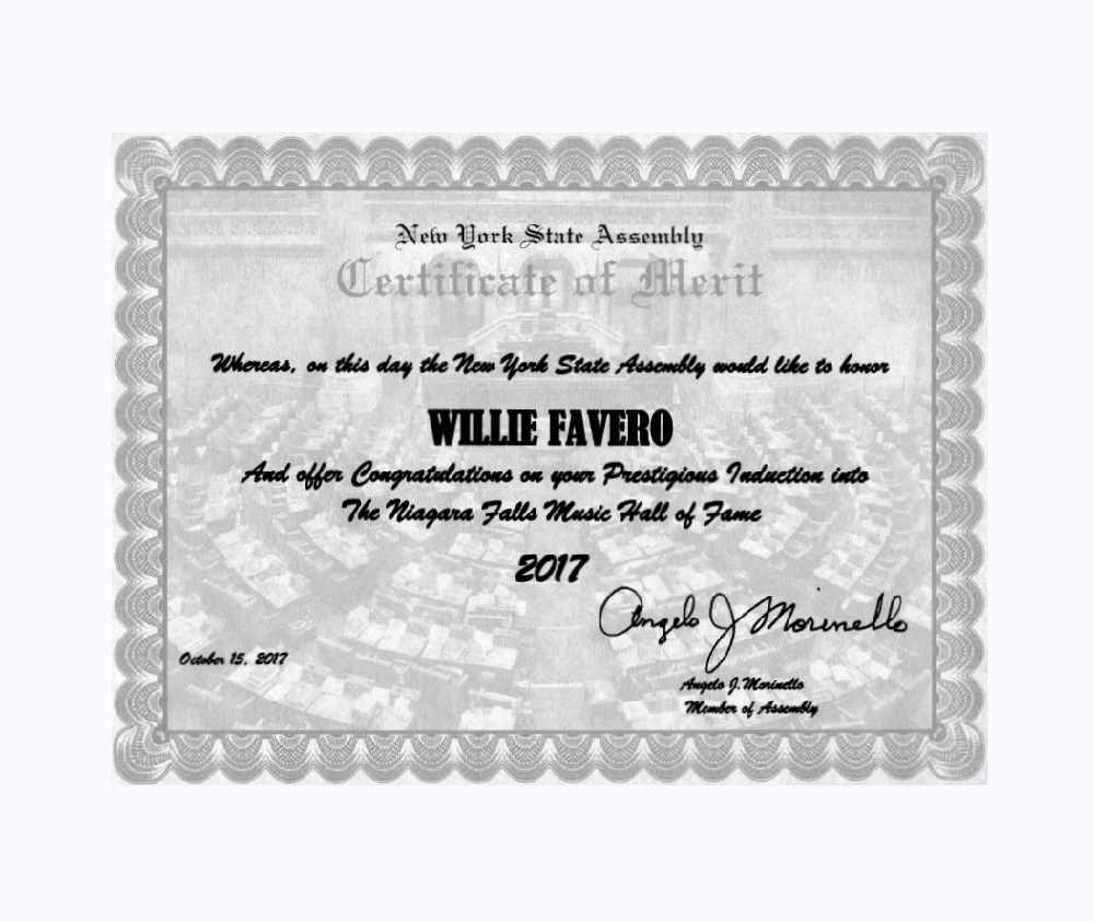 New York State Assembly Certificate of Merit